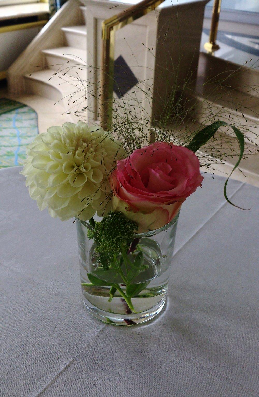 rose creme sommerlich.jpg