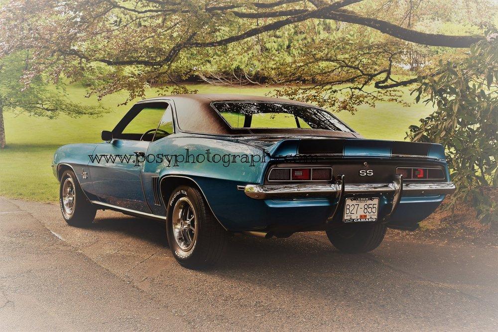 1969 Lemans blue Camaro