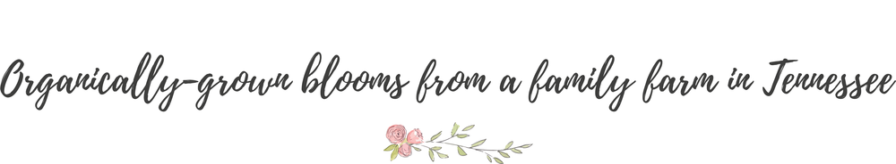 Three Sisters flower farm tennessee