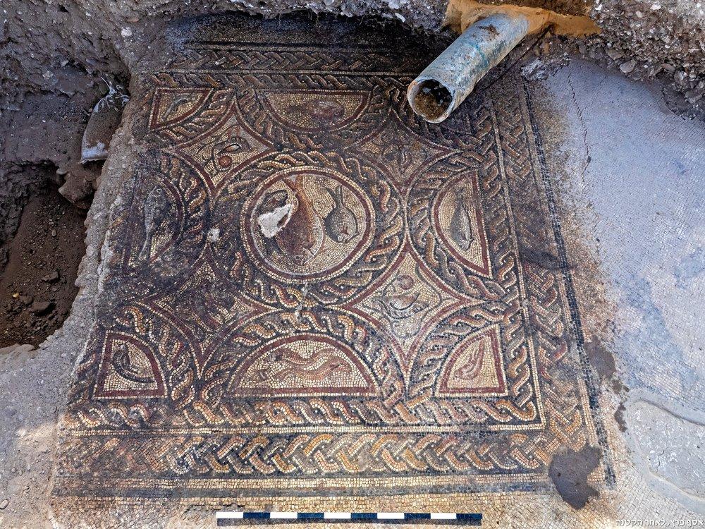 The Lod mosaic exposed last week.  Photo: Niki Davidov, IAA