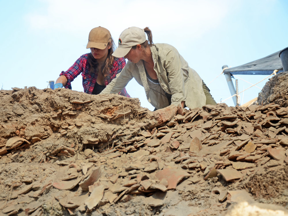 Students exposing the pottery sherd pile. Approximately 100,000 damaged storage jars were discarded at the site.  Photo: Yoli Schwartz, IAA