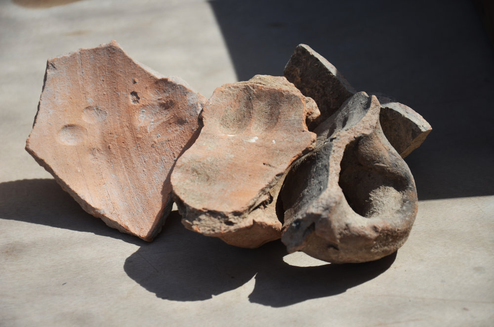 The potter's fingerprints on 1500-year old storage jar handles.  Photo: Yoli Schwartz, IAA