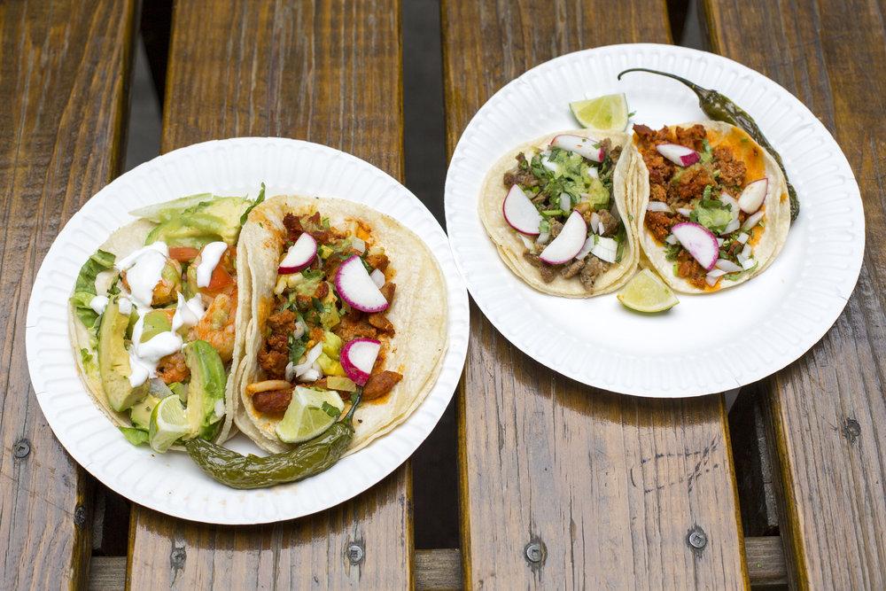Tacos and mini tacos