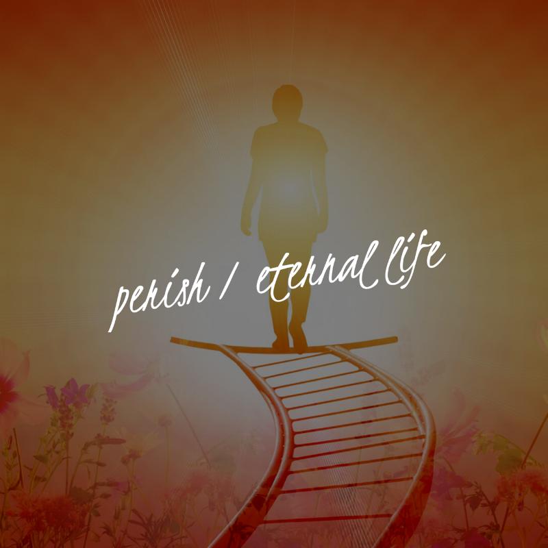 perish.PNG