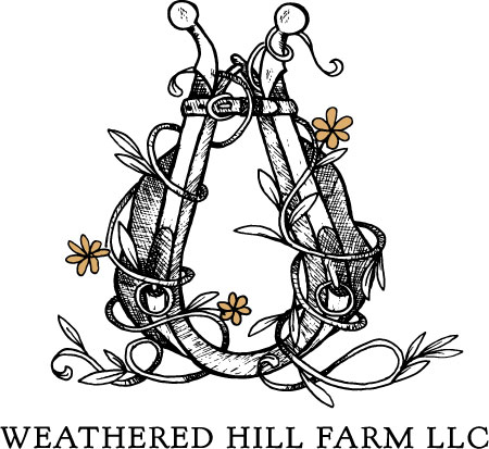 Weathered Hill - Weathered Hill Farm LLC is a family farm that raises fresh meat including lamb, chicken, and pork. Family and pet friendly, bring the whole gang! They sell their meats at our onsite farm store all year around, the Hobart Farmers' Market Fridays June through September 4:00pm-7:00pm, and La Basse Cour Farm Store. Check out our website, Facebook page and Instagram @weatheredhillfarmllc.