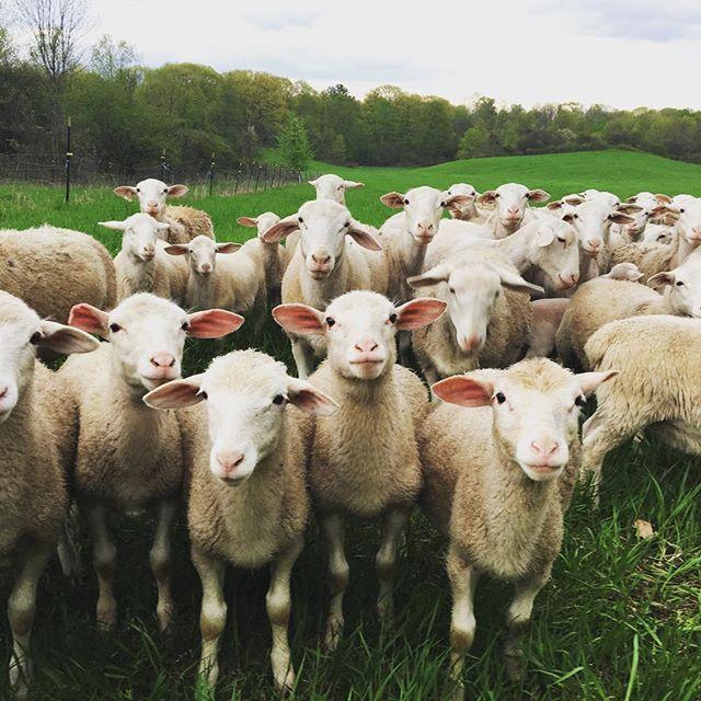 Tour the farms! -