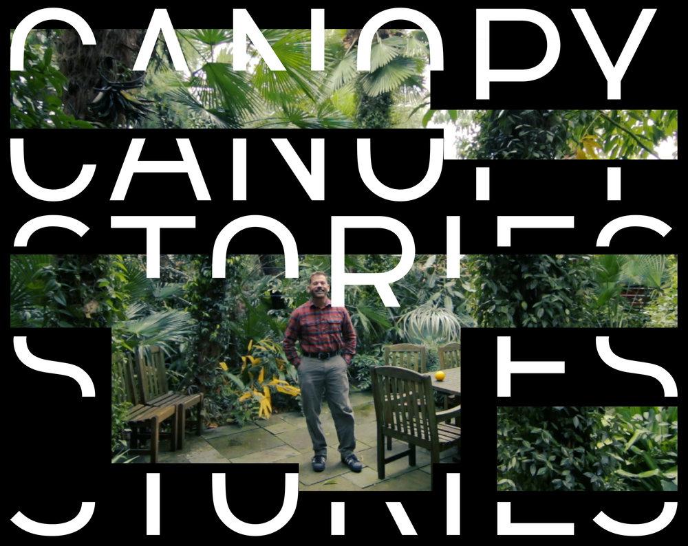 CanopyStories-LandingPage-Mobile-01.jpg