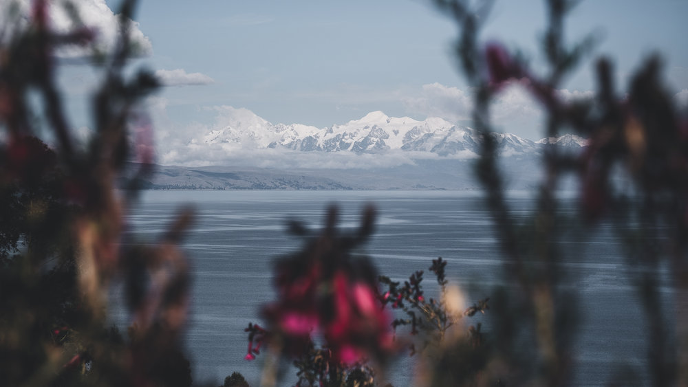 View to the Cordillera Real | Titicaca lake