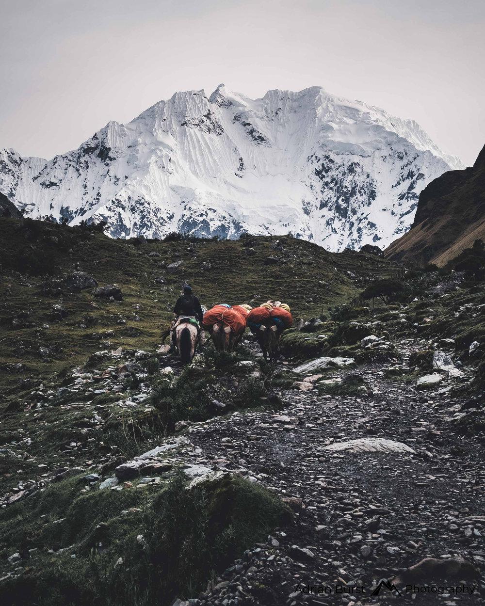 70   Salkantay Trek, Cordillera Vilcabamba