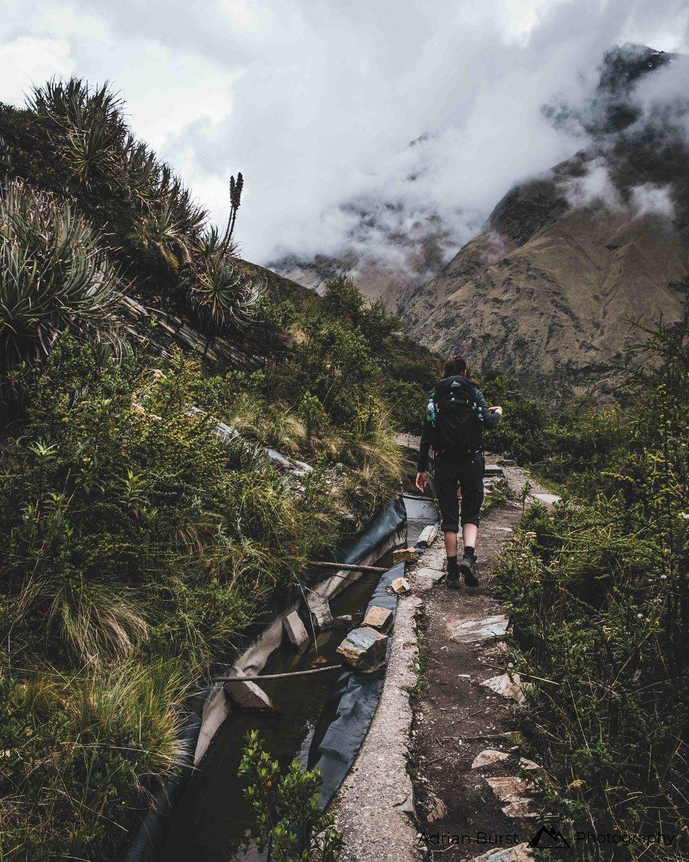 59   Salkantay Trek, Cordillera Vilcabamba