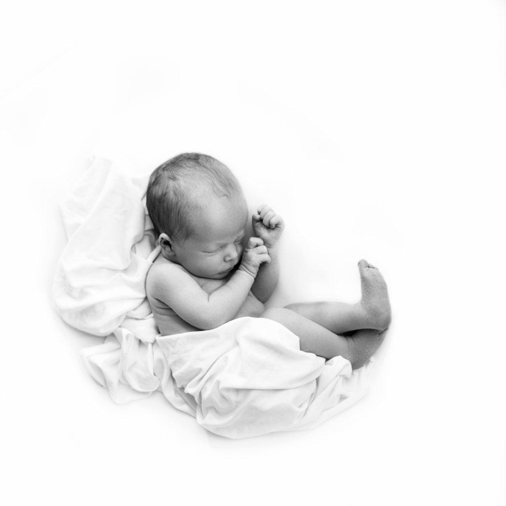 etchison_emily_newborn_2017--8.jpg