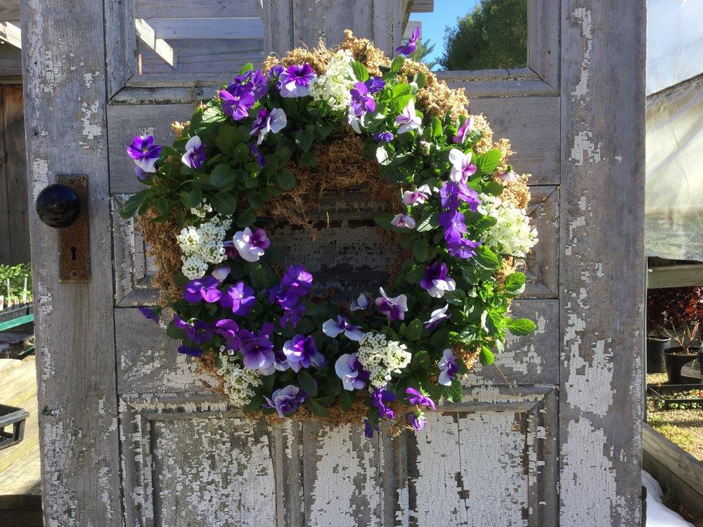 Living Wreath class, Mcsherrys Nursery and Garden Center