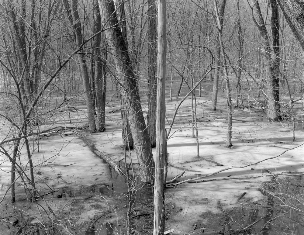 Saint Croix (MN) Floodplain Forest Series, Ice Out Apri 2011