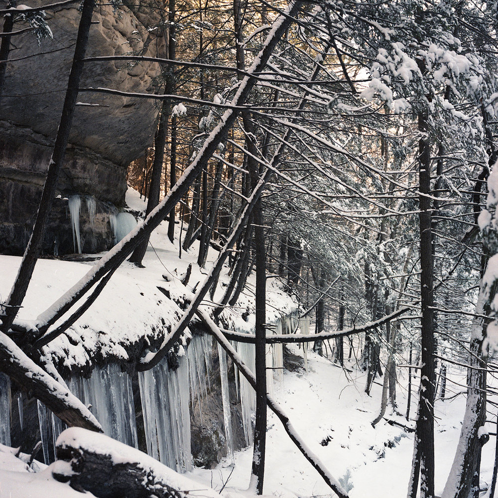 Pine Hollow, January 1982