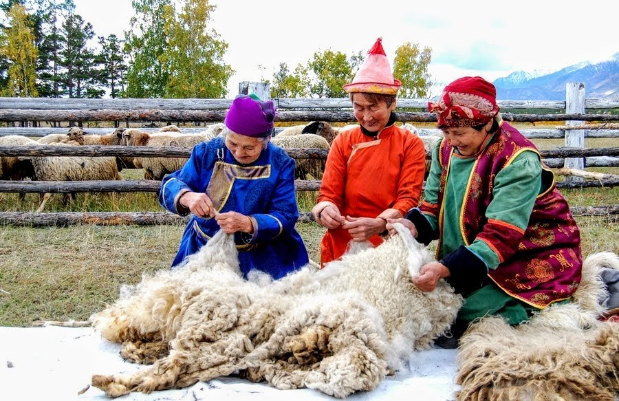 Buryat women sorting Buubey wool