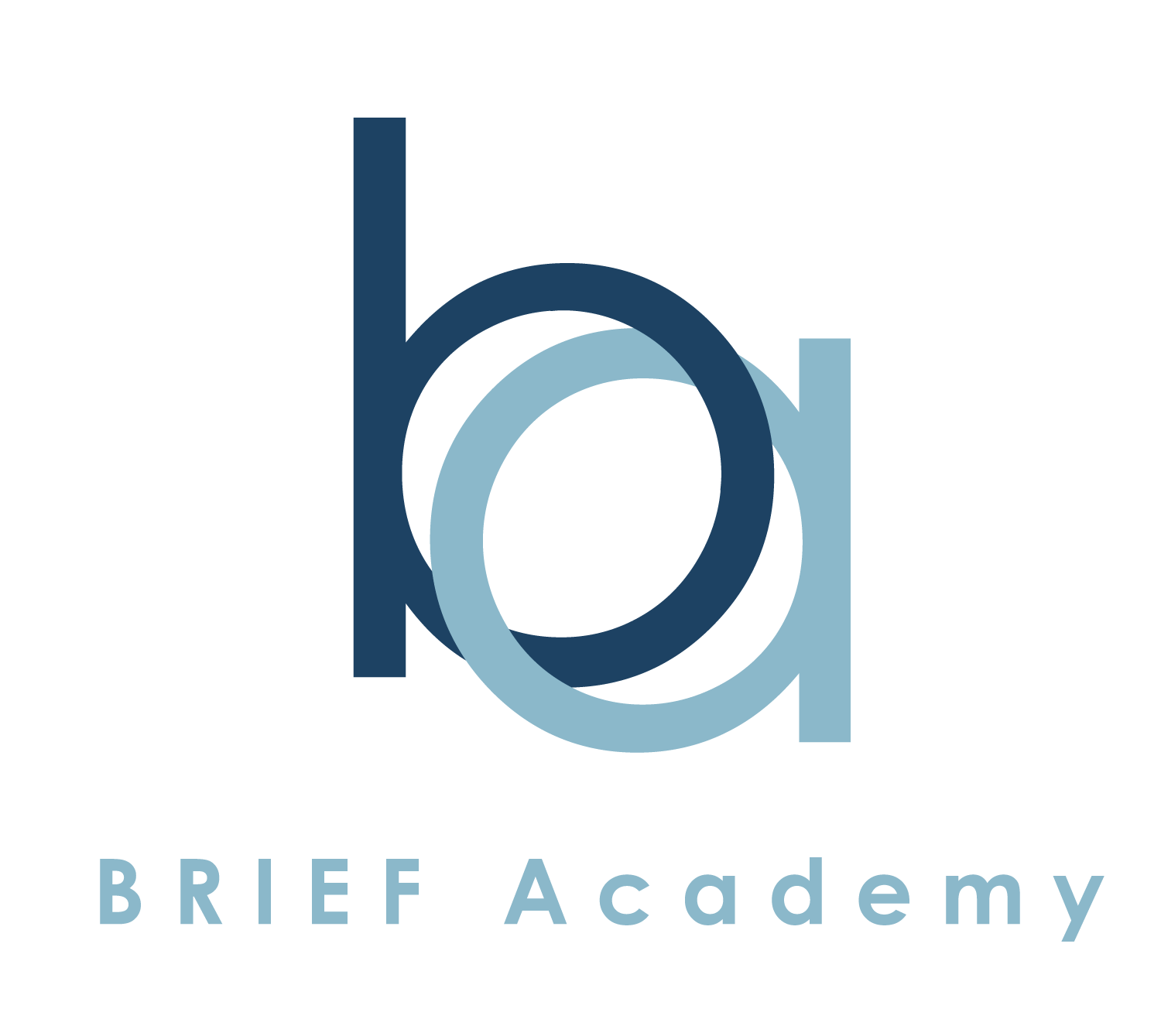 Coaching Services — Brief Academy