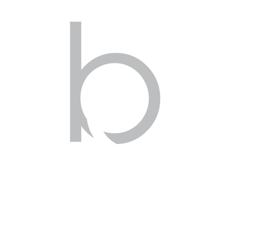brief-academy-singapore-logo.png