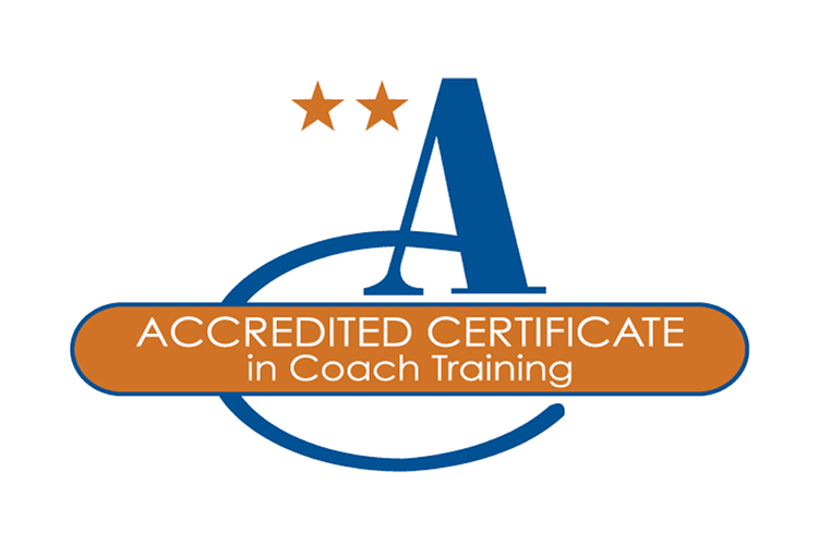 brief-academy-accredited-certificate.png