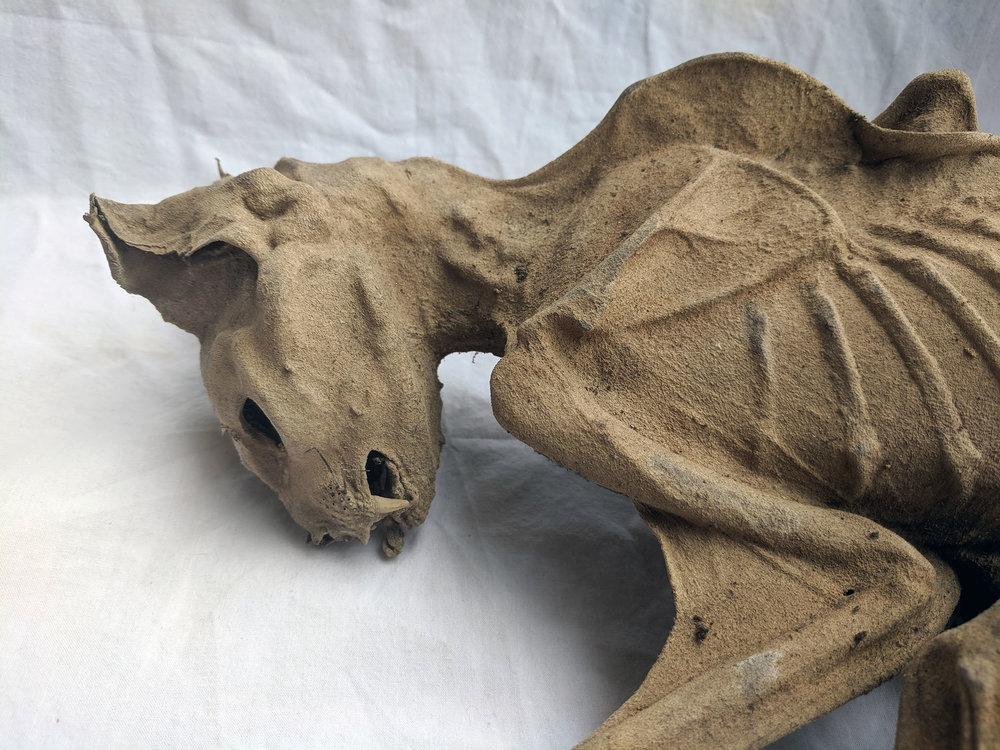 Mummified cat (4).jpg