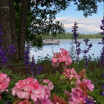 Rauhallinen  sunnuntain aamuhetki. Mieli rauhoittuu kauneuden keskellä. Vanhankylän Kartano- sinua lähellä❤️