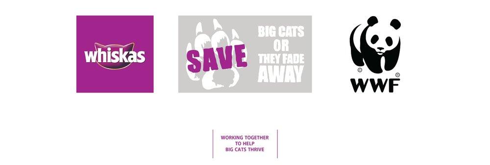 Save Big Cats layout-01.jpg