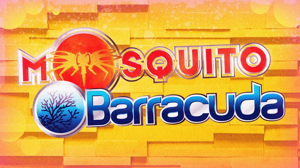 MOSQUITO-BARRACUD-BANNER-2018-FB-FX4.jpg