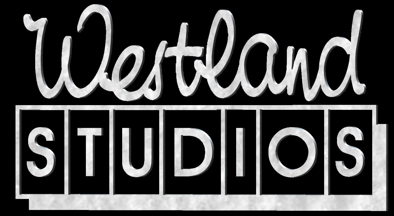 Westland Studios Dublin Ssl Recording Studio In Ireland Live Setup 2010