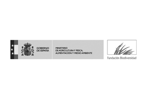 fundacion biodiversidad.png