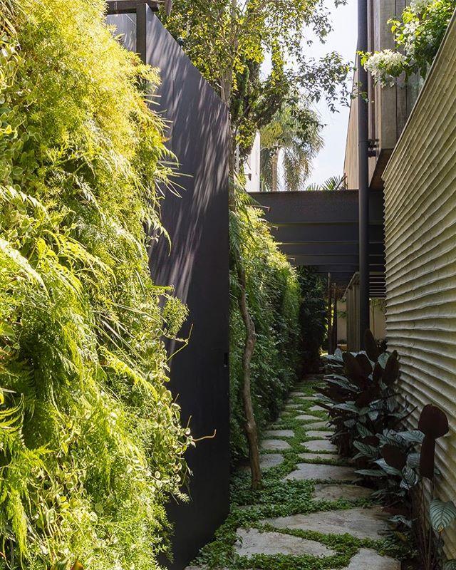 Acesso com parede verde de diversas espécies, piso irregular com junta vegetada e forração Maranta Cinza 🍃 . #cenariopaisagismo #paisagismo #jardim #landscapedesign #landscape #guimattosarquitetura #paredeverde #landscapedesign