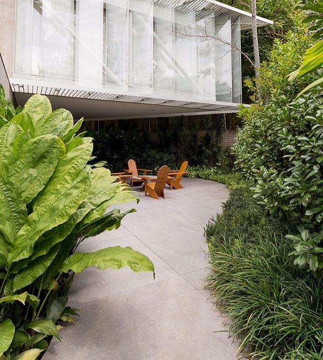 #semfiltro #cenariopaisagismo #paisagismo #jardim #texturas #landscape #landscapedesigner #garden