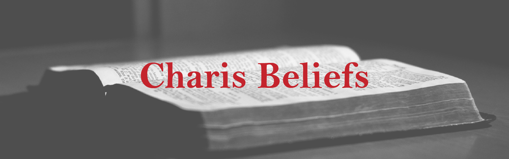 Here you can find the Charis Commitment to Common Identity, the current beliefs document for the Fellowship.