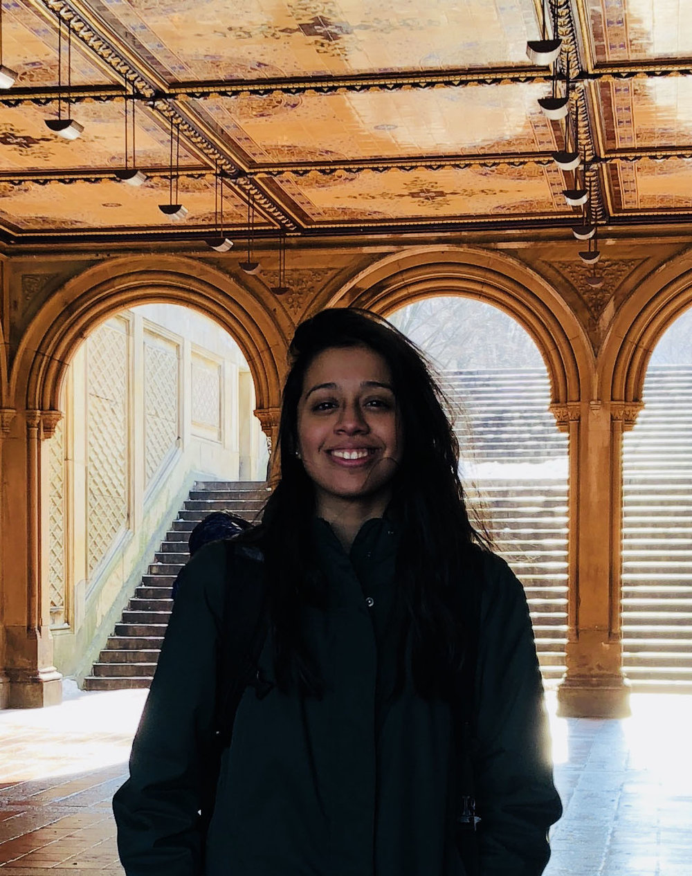 amy carrillo -   lead designer. proud citizen. amy is in the class of fordham 2020 majoring in environmental studies. She is enthused to start a career in ecology restoration and/or environmental justice.contact info: acarrillo6@fordham.edu