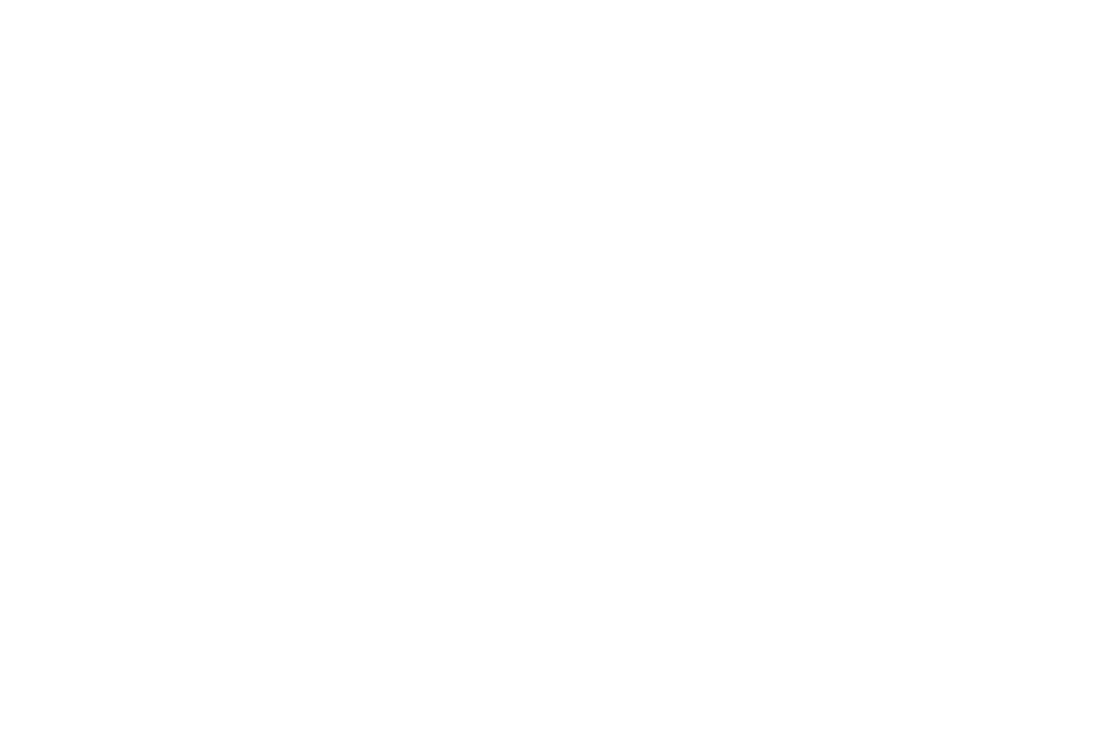 BEST DIRECTOR - STUDENT - Hang Onto Your Shorts Film Festival - 2017.png