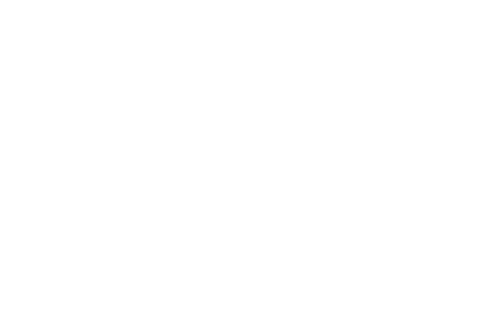 Brightside Tavern Film Festival  - 2017.png