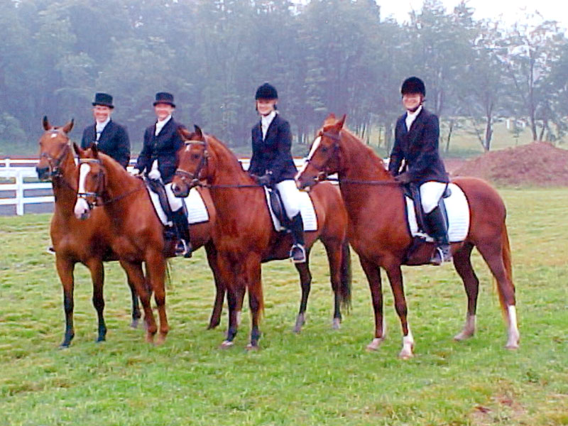 2nd from Left: Phoebe's homebred Delvin with their Quadrille Team