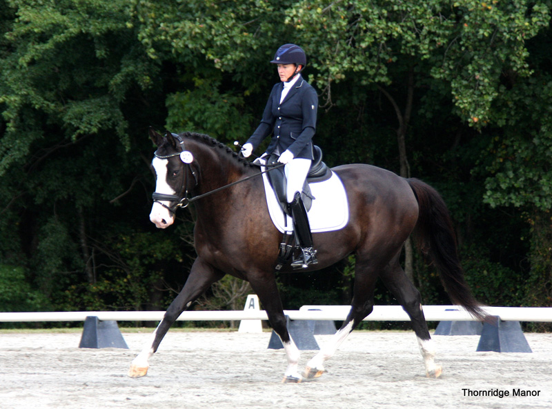 Phoebe & Dressed to Kill 77.5% at second show together 2014
