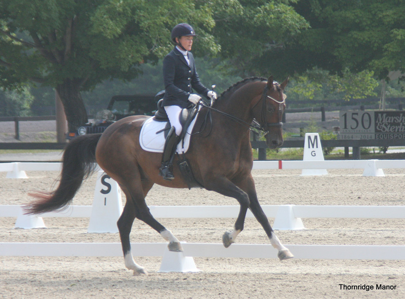 Phoebe & Prince win 4th Level debut 2014 -66%