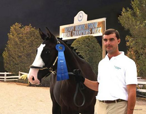 In 2010 Chuck won AA Handler at Dressage at Devon with Dressed To Kill. Calvin was only a yearling!