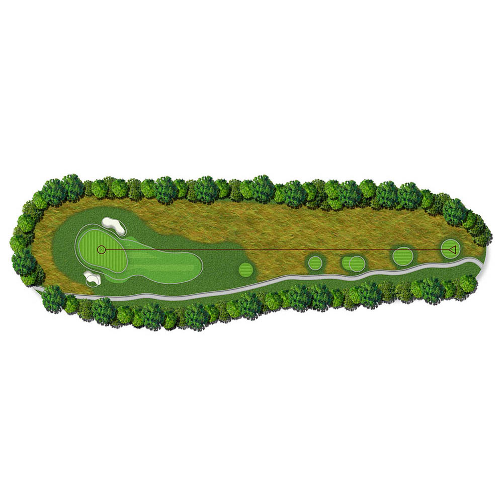 Hole 11_McLemore_Course_Overview_Rees_Jones_Bill_Bergin.jpg