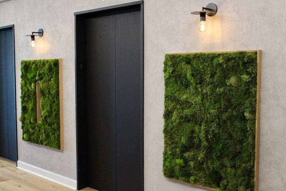 Custom Moss Design