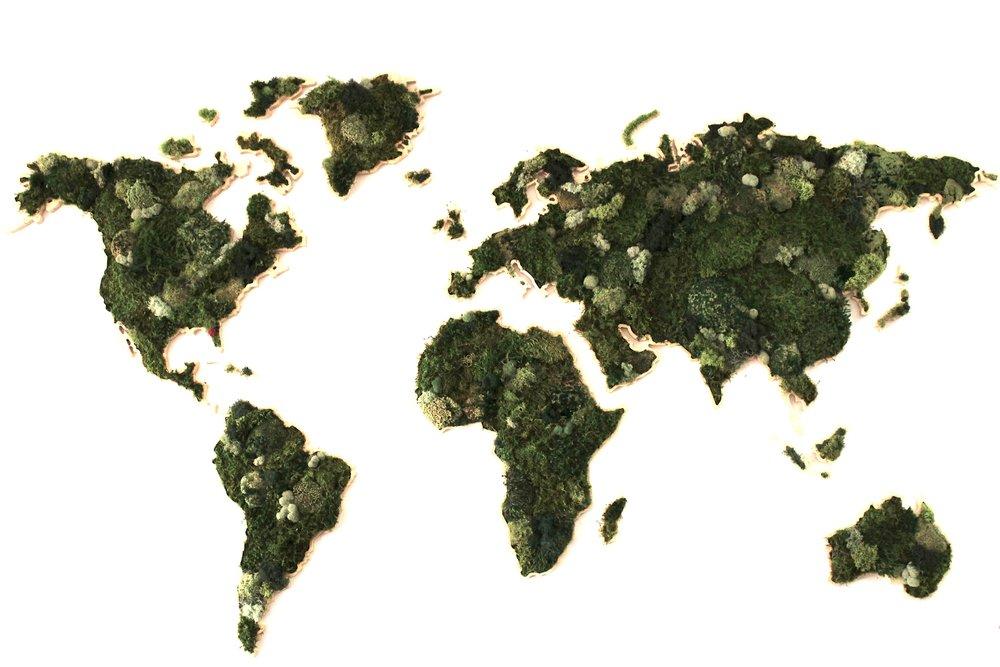 Custom Moss World Map Design