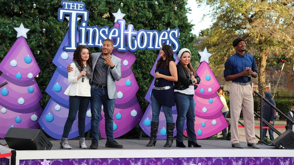 The Tinseltones - The Tinseltones is a great a cappella twist on many current and classic holiday songs. This outdoor show takes place at the Rockville Christmas tree outside of Rockville High School.