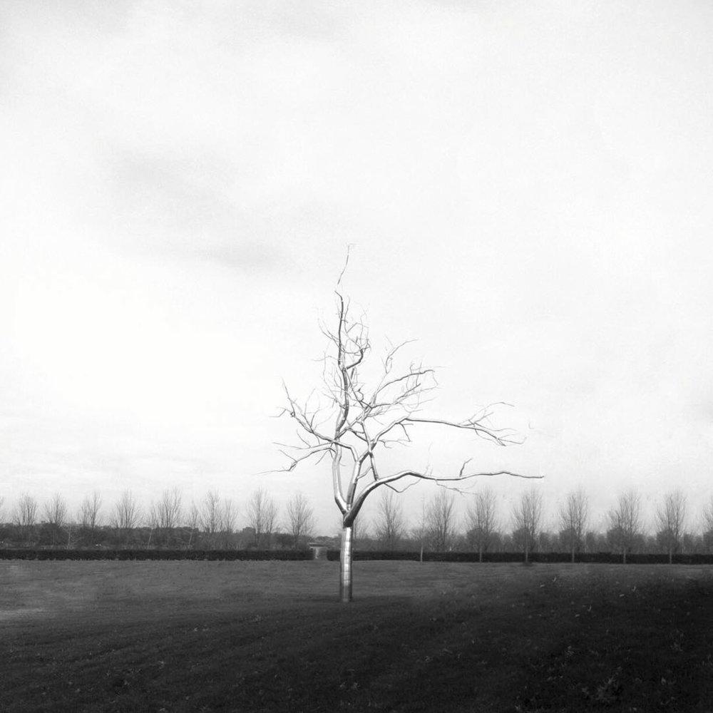 Metal Tree.jpg