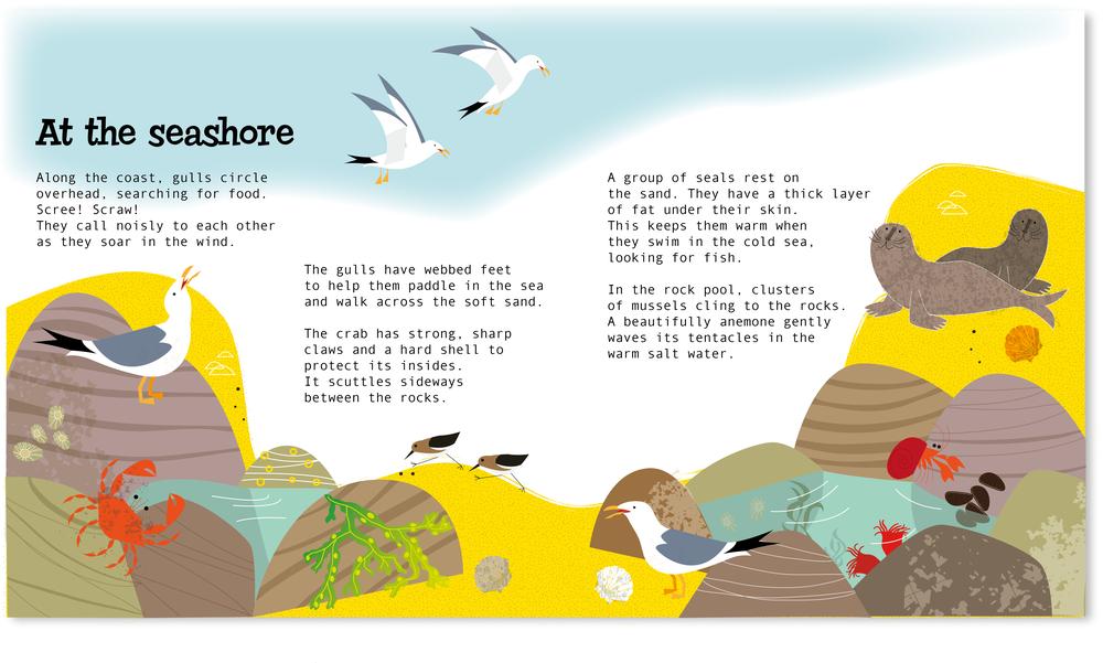 seashore.png