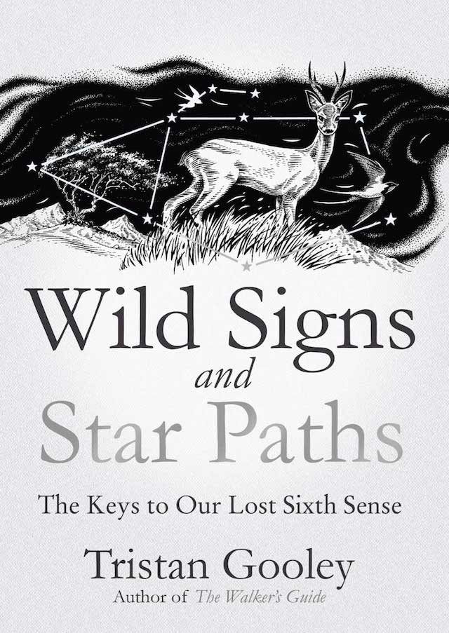 wild-signs-and-star-paths-sion-smith-blog.jpg