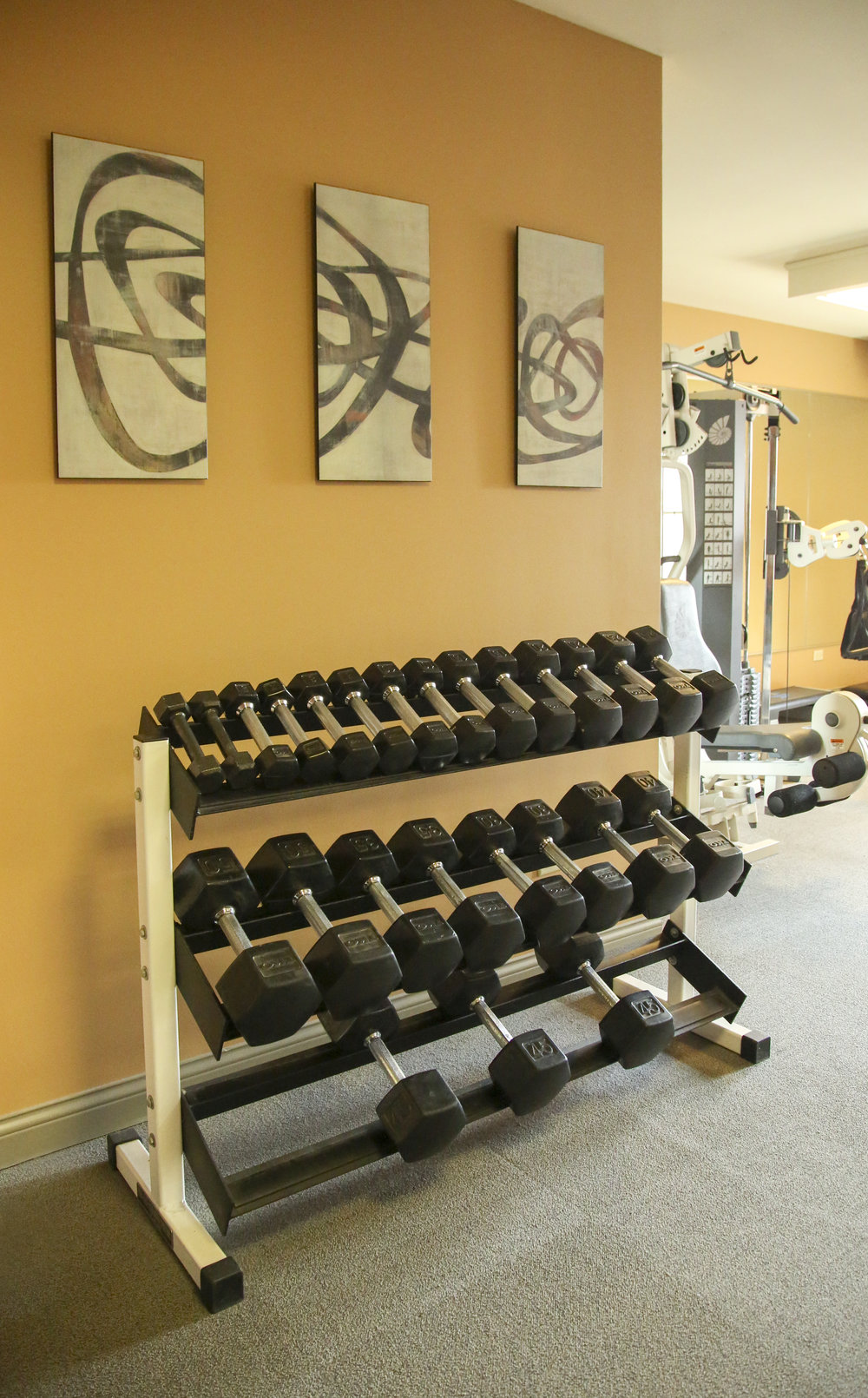 Fitness center with Step Machine, Treadmills, Ellipticals and Free Weights
