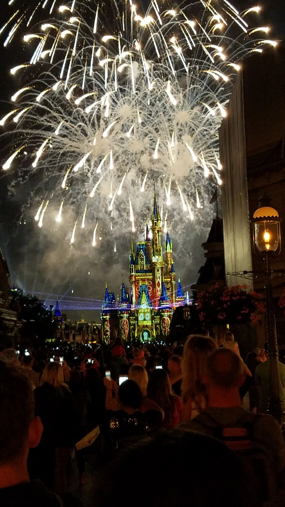 """Happily Ever After"" nighttime spectacular at Magic Kingdom in Walt Disney World. Photo Credit: Kari Fello/Jon Fisher"
