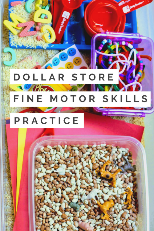 Dollar Store Fine Motor Skills Practice- Stay At Home Momming- Fine Motor Skills Practice.png