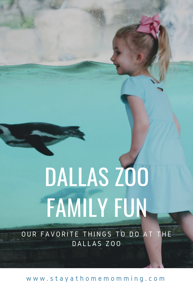 Fun at theDallas Zoo.png