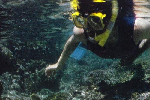 Escape--Dive-into-Coffs-1-THUMB.jpg